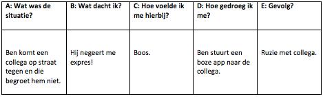 G-schema voorbeeld psychsichehulpoline.nl